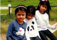 Dari Haid Dua Kali Setahun, Hamil Kembar Selepas Sebulan Pengambilan Biodex